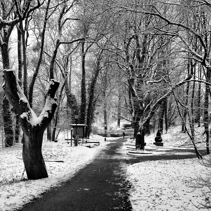 Salzburg parque