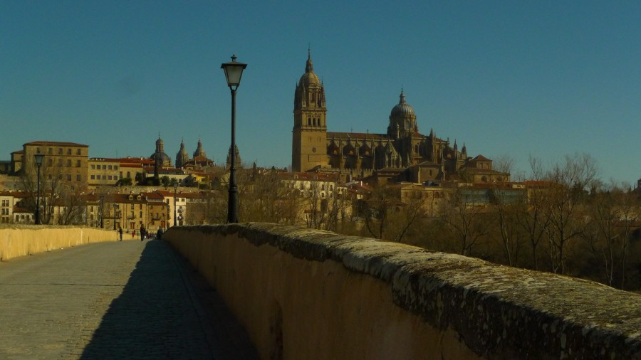 Vista do centro de Salamanca e a Catedral desde a ponte romana